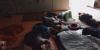 spanje2019_3-medium
